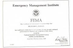 Fema-ics-700